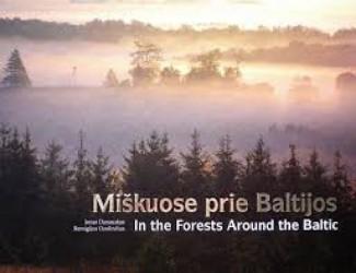 Miškuose prie Baltijos