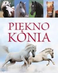 Piekno konia (žirgai)