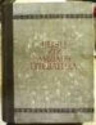 Rusų XIX amžiaus literatūra
