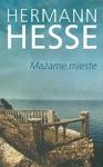 Hermann Hesse knyga Mažame mieste